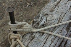Corda estacada sobre o log foto de stock royalty free
