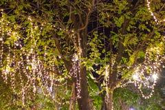 A corda exterior decorativa ilumina a suspens?o na ?rvore no jardim na noite imagem de stock royalty free
