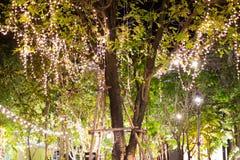 A corda exterior decorativa ilumina a suspens?o na ?rvore no jardim na noite foto de stock royalty free