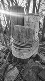 Corda legata sulle poste di legno Fotografie Stock