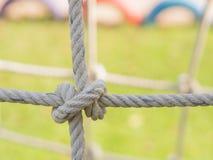 Corda legata in un nodo Immagine Stock