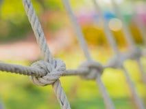 Corda legata in un nodo Fotografia Stock