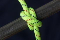 Corda luminosa legata intorno a legno Fotografie Stock