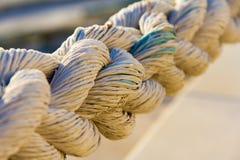 Corda marina robusta Fotografia Stock