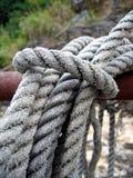 Cordas Fotos de Stock