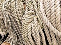 Cordas Imagem de Stock