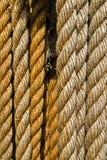 Cordas Imagens de Stock