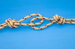 Cordas atadas da escalada de rocha Fotografia de Stock