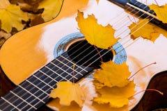 Cordas da guitarra e das folhas clássicas Foto de Stock