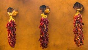 Cordas da pimenta Imagem de Stock