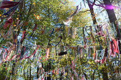 Cordas dos desejos nas madeiras Fotos de Stock Royalty Free