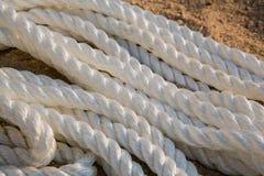 Cordas marinhas grandes do mar no montão Imagens de Stock