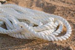 Cordas marinhas grandes do mar no montão Imagem de Stock