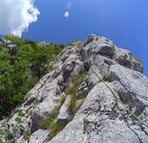 cordas na parede da rocha Fotos de Stock Royalty Free