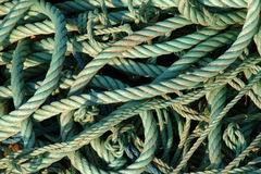Cordas verdes Foto de Stock