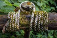 Corde Photo libre de droits
