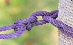 Corde attachée par pourpre sur le poteau Photographie stock libre de droits