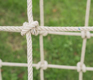 Corde attachée dans un noeud Image stock