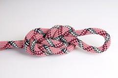 Corde d'alpiniste avec le noeud Images libres de droits
