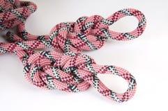 Corde d'alpiniste avec le noeud Image libre de droits