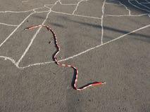 Corde de saut sur l'asphalte décoré de terrain de jeu image libre de droits
