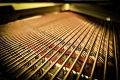 Corde del pianoforte a coda Immagini Stock Libere da Diritti