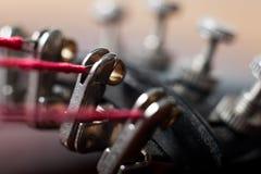 Corde del violino e pioli di sintonia fotografie stock libere da diritti