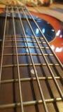 Corde della chitarra Immagini Stock