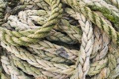 Corde di pesca Immagini Stock Libere da Diritti