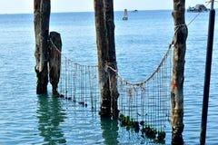 Corde e poste di legno nel mare Immagini Stock