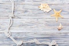 Corde et étoiles de mer marines sur les conseils blancs Photos libres de droits