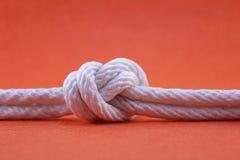 Corde et noeud Image libre de droits