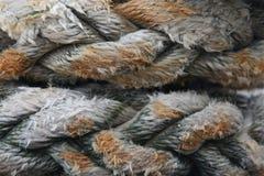 Corde humide Image stock