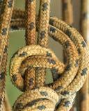 Corde jaune de navigation Photos libres de droits