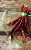 Corde rouge sèche de piment et de plastique Photos libres de droits