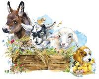 Cordeiro asno Chiken Cabra Cão de cachorrinho patinho coleção animal das explorações agrícolas da aquarela ilustração royalty free