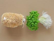 Cordero de alimentación con la hierba Ovejas decorativas Imágenes de archivo libres de regalías