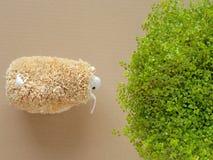 Cordero de alimentación con la hierba Ovejas decorativas Imagen de archivo libre de regalías
