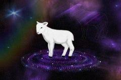 Cordero de dios en el universo Imagenes de archivo