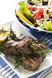 Cordero Kebabs con la ensalada griega Imagen de archivo libre de regalías