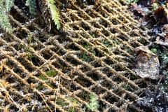 Cordes au sol image libre de droits