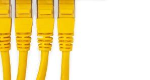 Cordes de correction jaunes d'UTP d'isolement sur le fond blanc photographie stock libre de droits