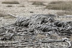 Cordes jetées sur le rivage Photo libre de droits