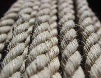 Cordes tordues accrochantes multiples Photo libre de droits