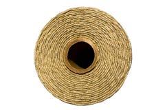 Cordicella grigia Fotografie Stock Libere da Diritti