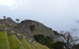 Cordilheira dos Andes. Angles Machu Picchu in Peru Royalty Free Stock Photography