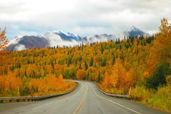 Cordilheira e Autumn Color de Alaska na estrada dos parques foto de stock royalty free