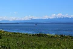 Cordilheira e opinião olímpicas de Puget Sound através de um campo na ilha de Whidbey Imagens de Stock