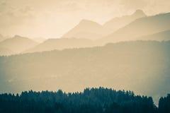 Cordilheiras e florestas mostradas em silhueta nos cumes Estilo do vintage Imagens de Stock