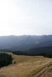 Cordilheiras, os Carpathians Foto de Stock Royalty Free